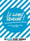Le Grand Trempoint -