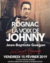 La voix de Johnny -