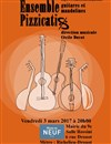 Pizzicatis | Ensemble de mandolines et guitares -