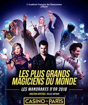 Les plus grands magiciens du monde casino de paris double diamond deluxe slot machines online